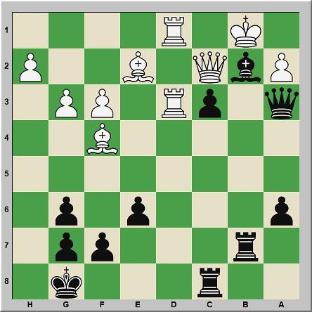 Mate 312 Testor – Schachinger