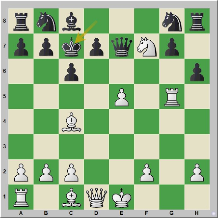 Mate 330 Morphy – Mac Connel